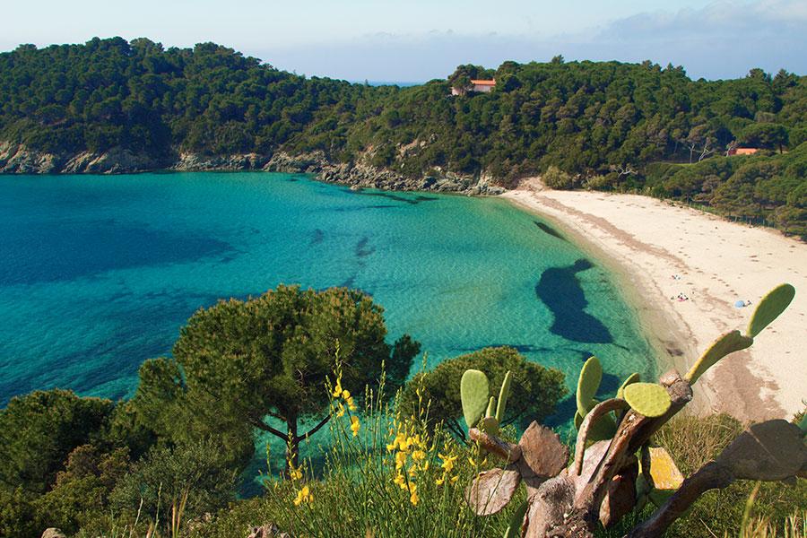 Le 8 migliori spiagge dell'Isola d'Elba